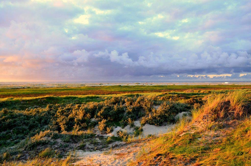 Abendsonne auf der groessten Ostrfriesischen Insel Borkum