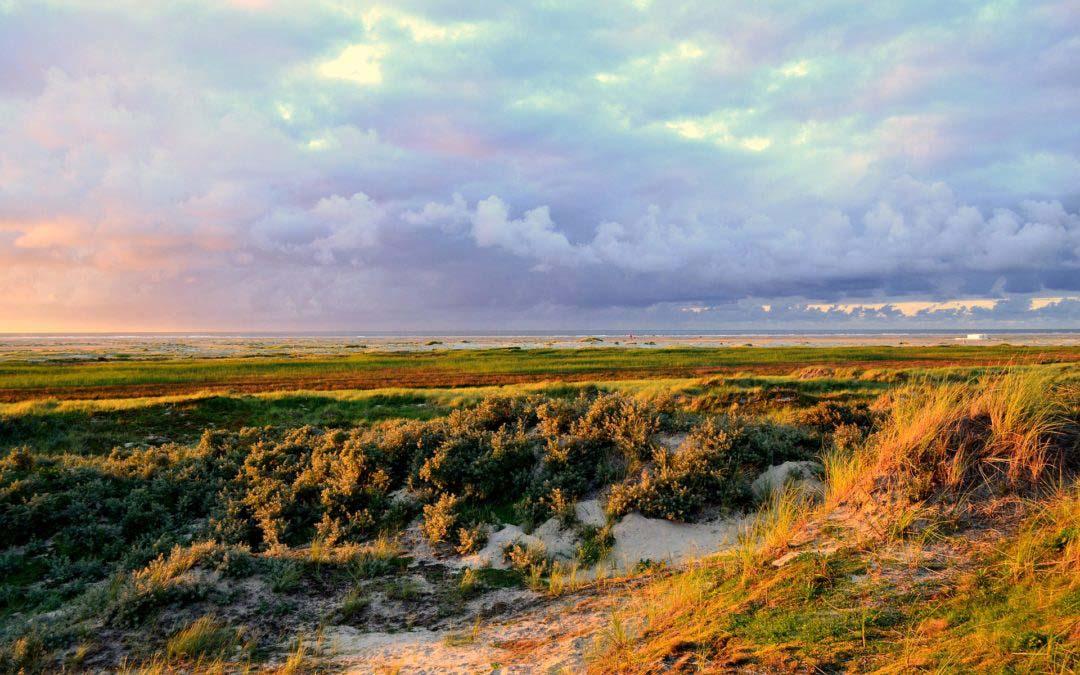 Die größte ostfriesische Insel – Borkum
