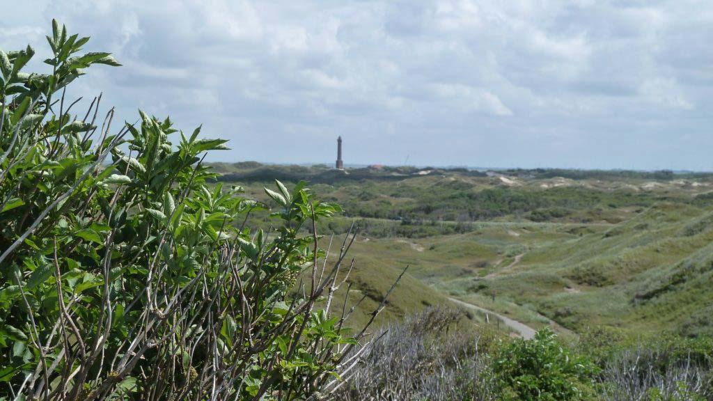 Blick vom Aussichtspunkt über die Nordseeinsel Norderney