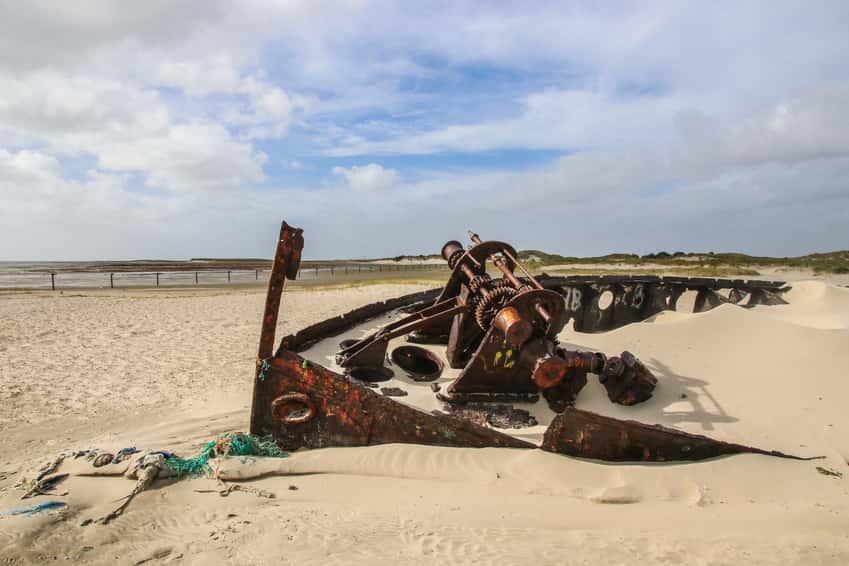 Norderney Wrack – Tagesausflug in unberührter Natur