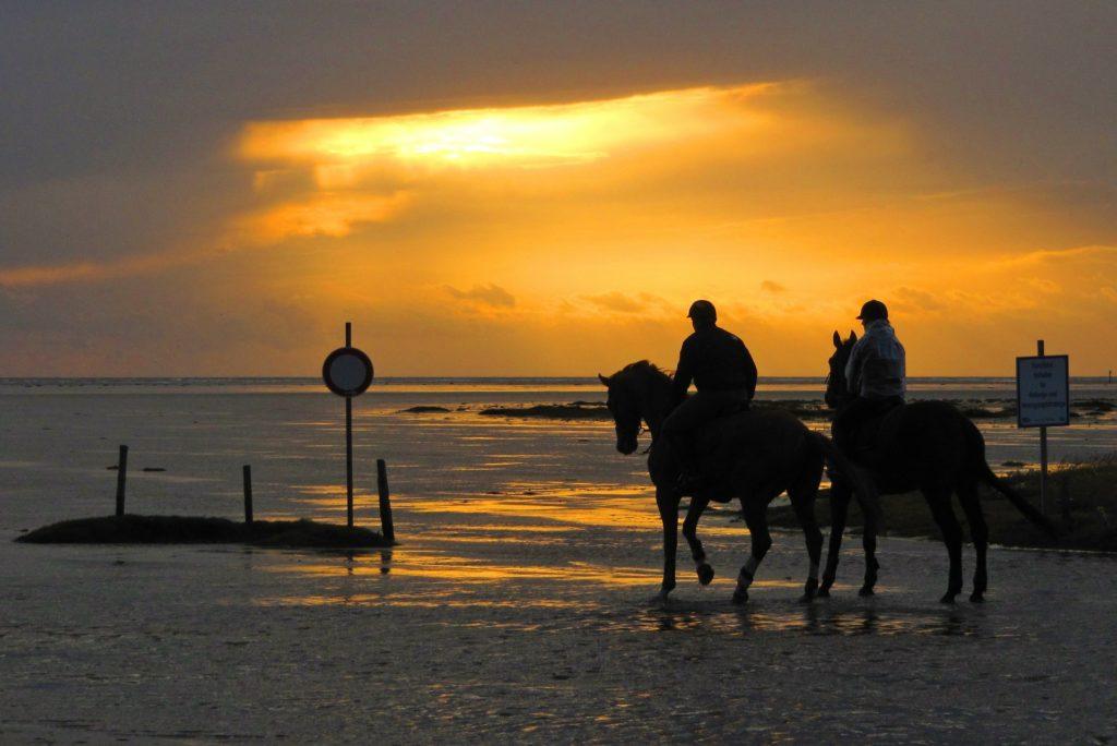 Reiten am Strand der nordfriesischen Insel Föhr