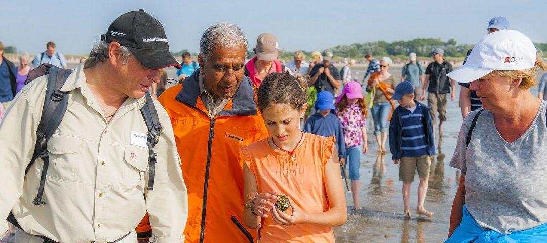 Urlaub auf den Nordseeinseln: Kinder-Uni auf Föhr