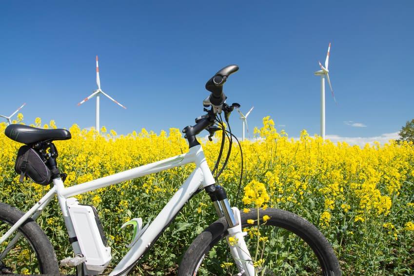 Nordseeinseln E-Bike vor Rapsfeld