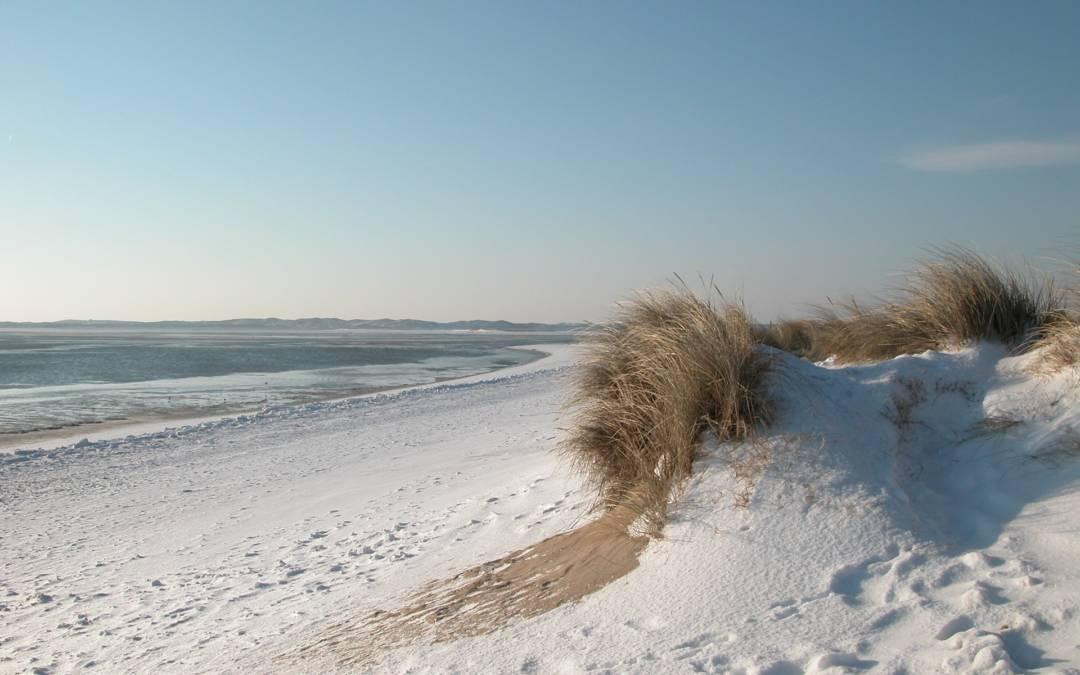 Erlebniszentrum Naturgewalten Sylt – Dort erwarten Dich Inselkräfte zum Anfassen
