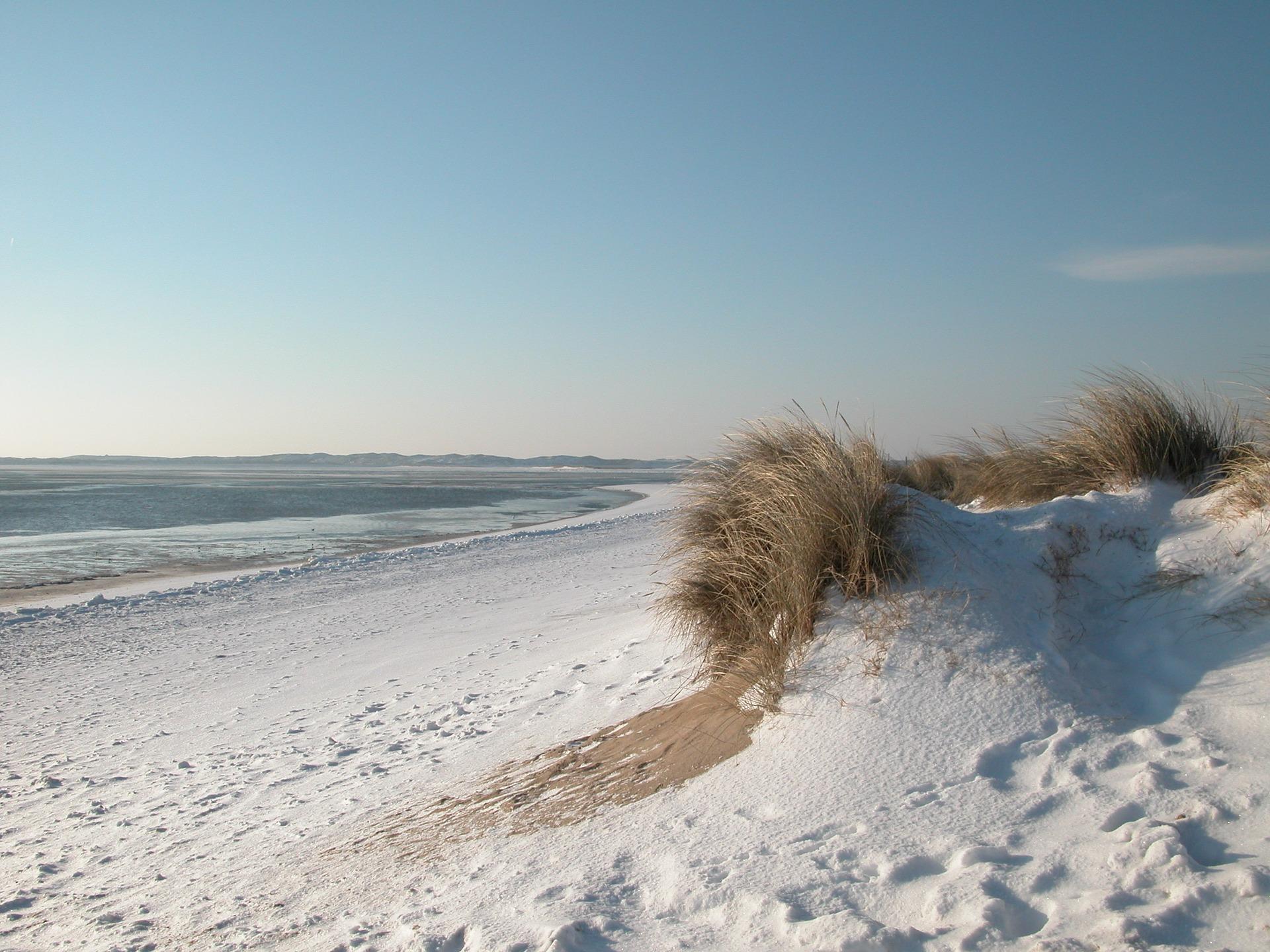 Erlebt die verschiedenen Jahreszeiten und Naturphänomene im Erlebniszentrum auf Sylt
