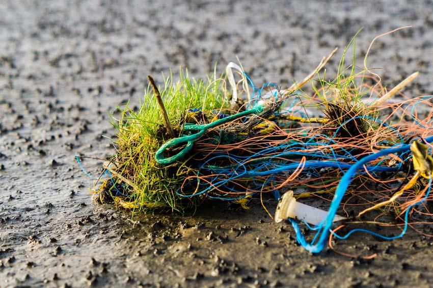 Die Nordseeinseln schwimmen im Müll – Vergiftung, Strangulation, Tod