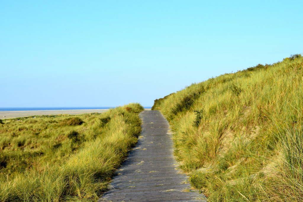 Deutsche Nordseeinseln: Steg in den Dünen der Nordfriesischen Insel Borkum