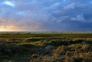 Landschaft Borkum - ostfriesische Insel mit Hochseeklima